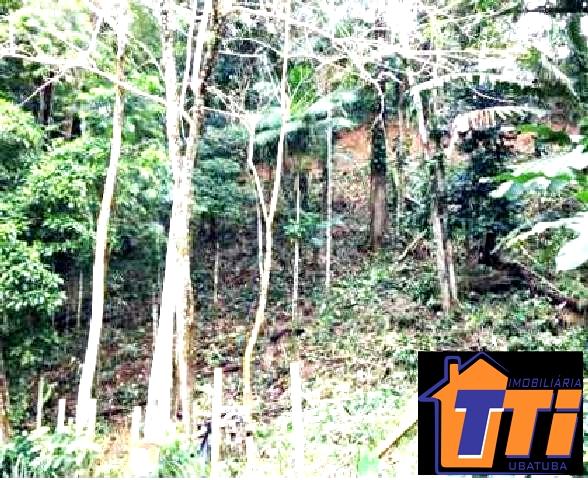 Terreno com 2000 m² em localização privilegiada no Itaguá